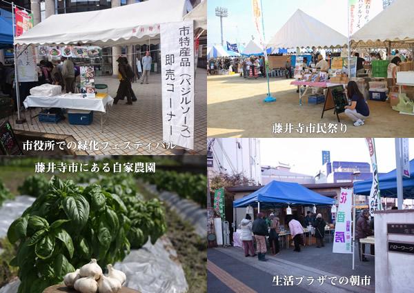 大阪府藤井寺市の特産品にこだわりのバジルソース